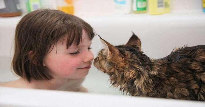Кошка помогла больной аутизмом девочке научиться взаимодействовать с людьми