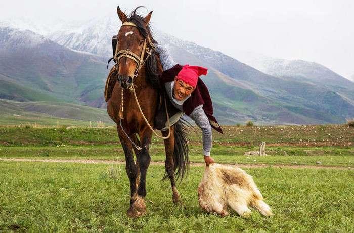 Что киргизу хорошо, то русскому не понять