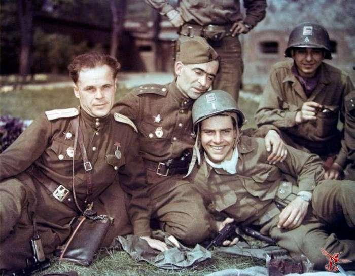Мифы о Второй мировой войне, в которые верит большинство людей, выросших на голливудских фильмах