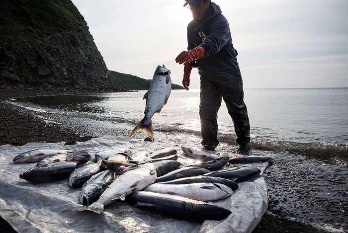 Сегодняшняя жизнь коренного населения Аляски