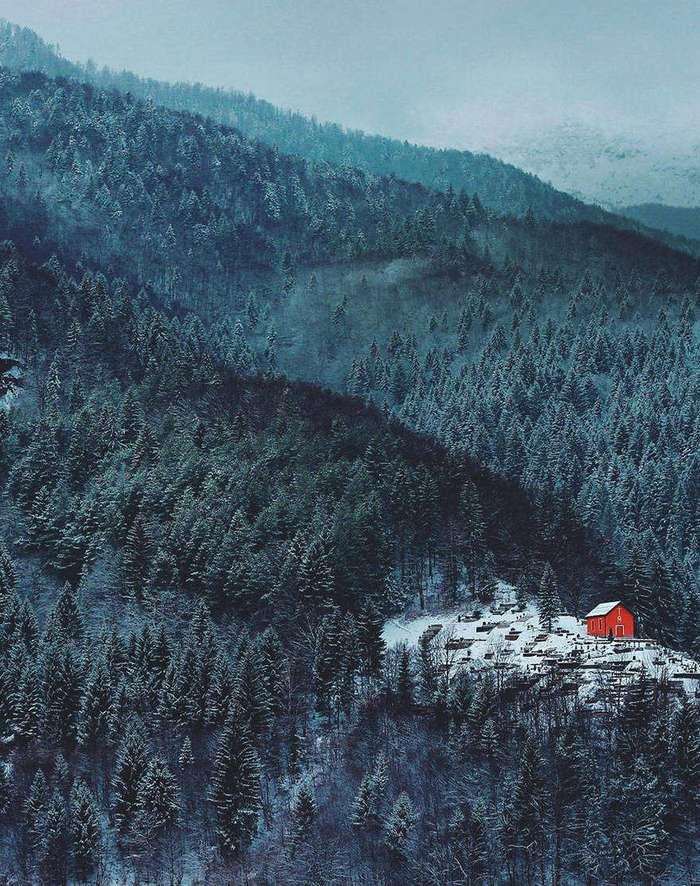 Небольшие уютные домики в лесу