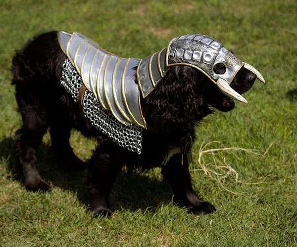 Средневековые доспехи для собак