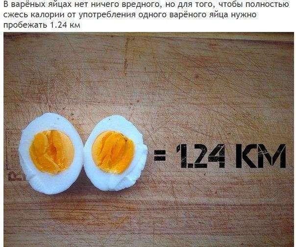 Ешь и беги: сколько километров нужно пробежать, чтобы полностью «сжечь» любимую вкусняшку?