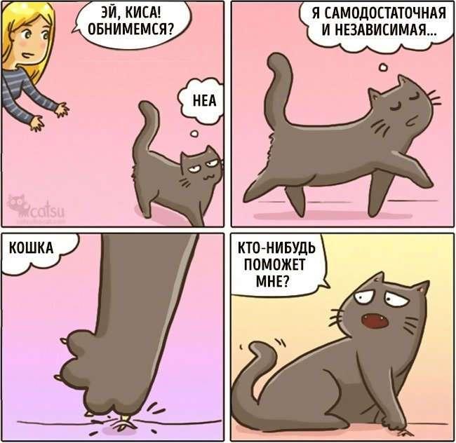 Забавные комиксы про жизнь с кошкой