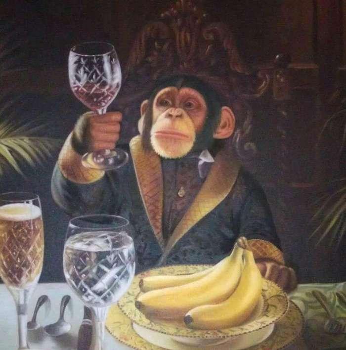Шимпанзе Джон бросил пить и умер