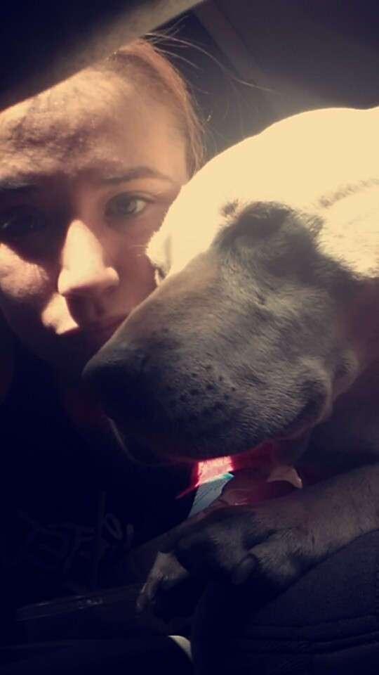 Хозяйка устроила праздник для собаки в последний день ее жизни