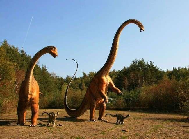 Сказочные парки для мелких и взрослых детей