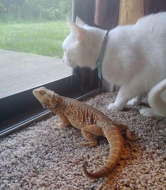 Неважно, насколько странный твой друг. Важно, чтобы вам было хорошо вместе.