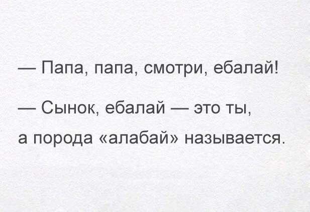 Юмор в цитатах