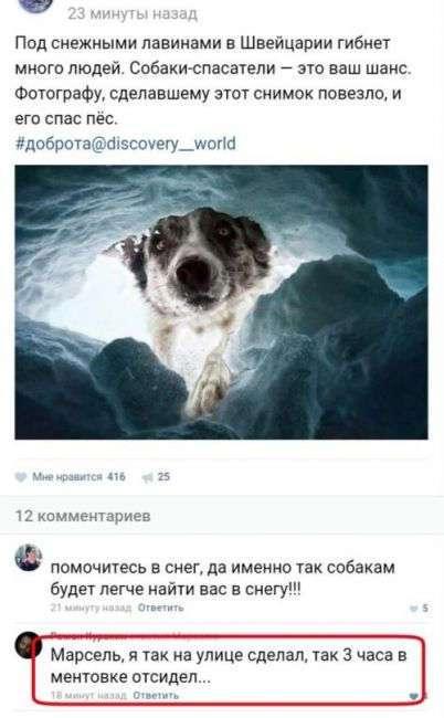 Юмор из социальных сетей (26 скриншотов)