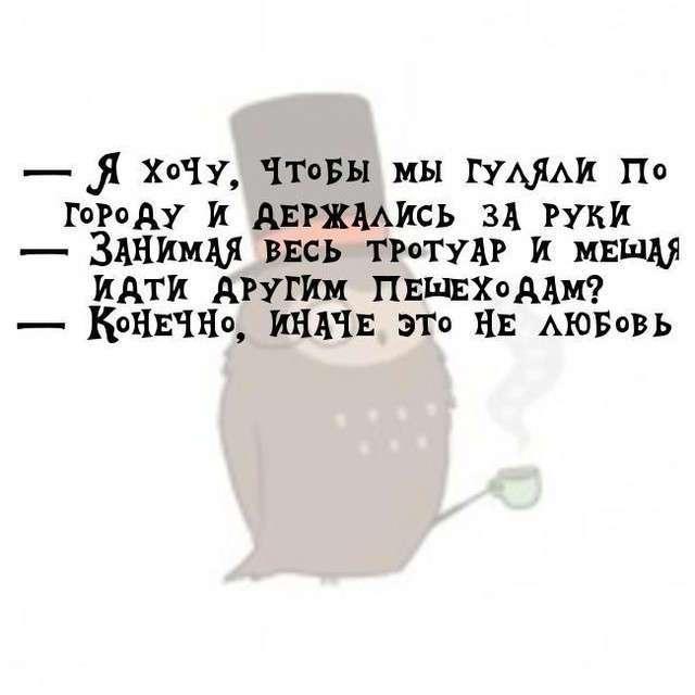 Мудрые записки совы Тимофея