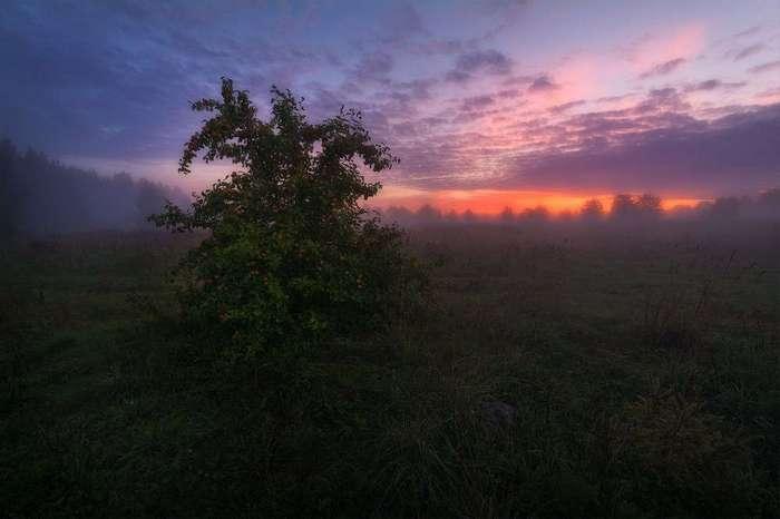 Красивые пейзажи Евгения Жмака