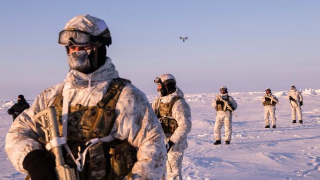 В погоне за айсбергами: как НАТО собирается сдерживать Россию в Арктике