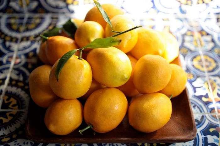 Лимончелло на водке
