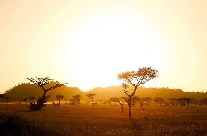 Колоритные снимки Африки с высоты птичьего полета