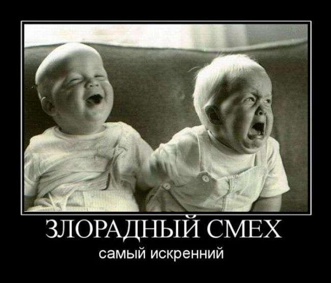Жизнь всегда найдёт, чем рассмешить