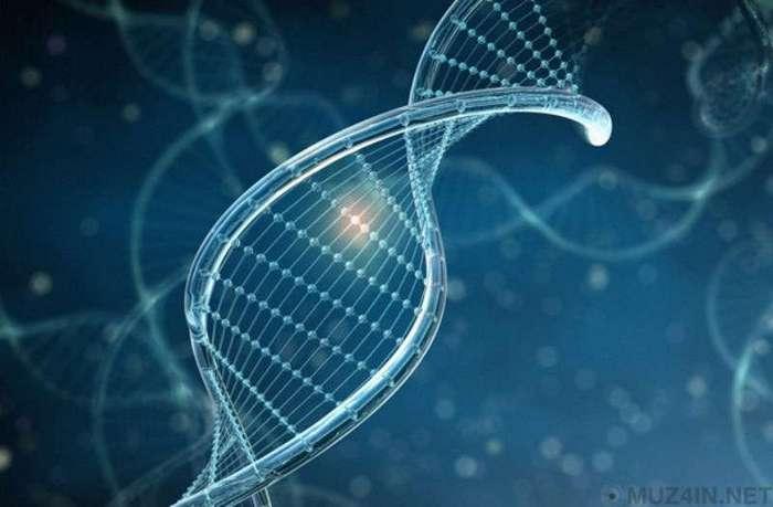 10 научных проектов, в которых люди взяли на себя роль Бога