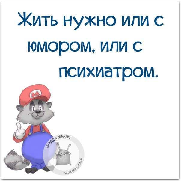 ЮМОРОК НА ВЕЧЕРОК