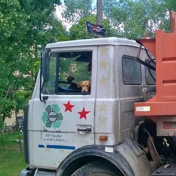 На мусоровозах работают творческие люди!