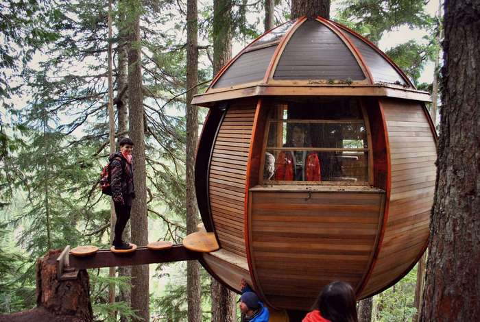 15 самых необычных домов на деревьях со всего мира