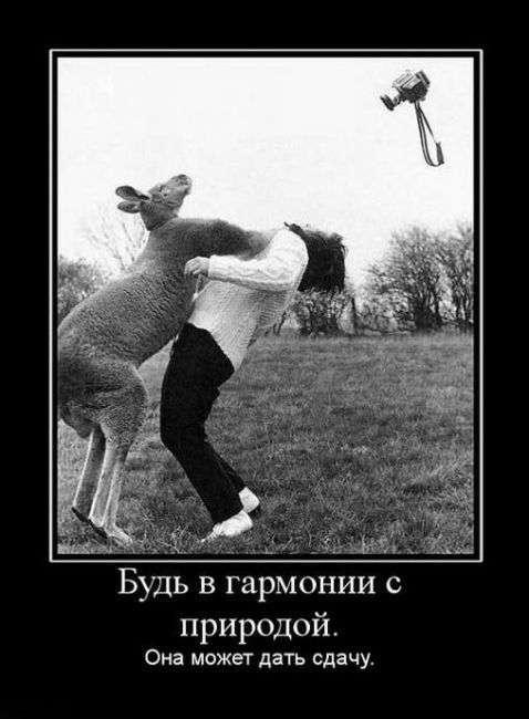 ПОДБОРКА ДЕМОТИВАТОРОВ