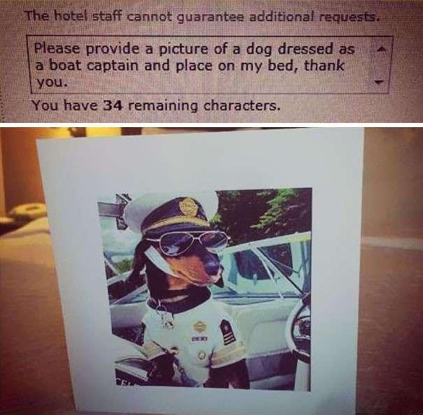 Как затроллить консьержа в отеле: самые смешные капризы постояльцев, которые были исполнены