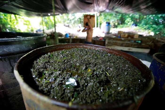 Кокаин как валюта в Колумбии