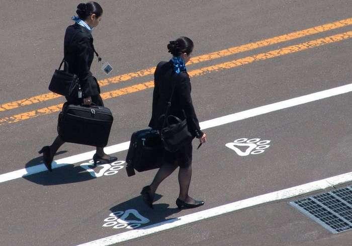 11 полезных лайфхаков по секрету от стюардесс