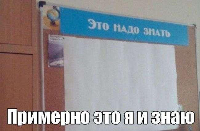 Смешные картинки с надписями, найденные на просторах интернета.