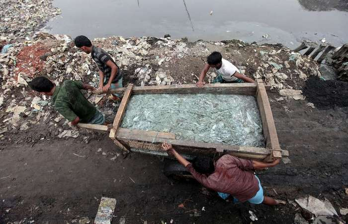 Обработка кожи в Бангладеше