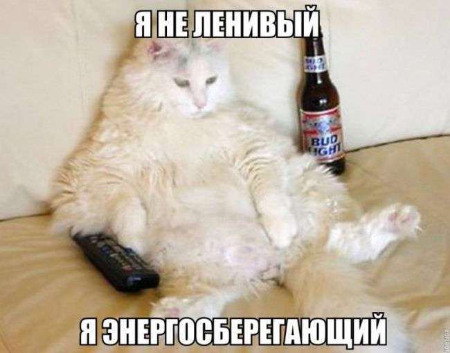 ЛЕНЬ-МАТУШКА