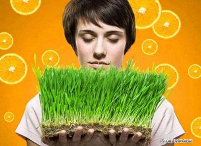 Любопытные факты о запахах