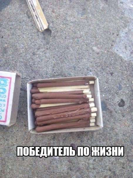 СВЕЖИЕ ФОТОМЕМЫ
