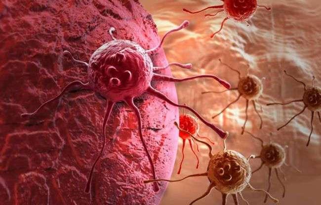 Раковые клетки могут быть устойчивыми к химиотерапии