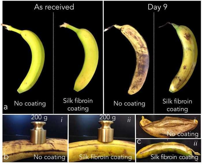 Съедобное экологичное покрытие сохраняет фрукты свежими без холодильника больше недели