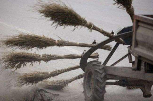 Как дворники чистят китайские дороги.