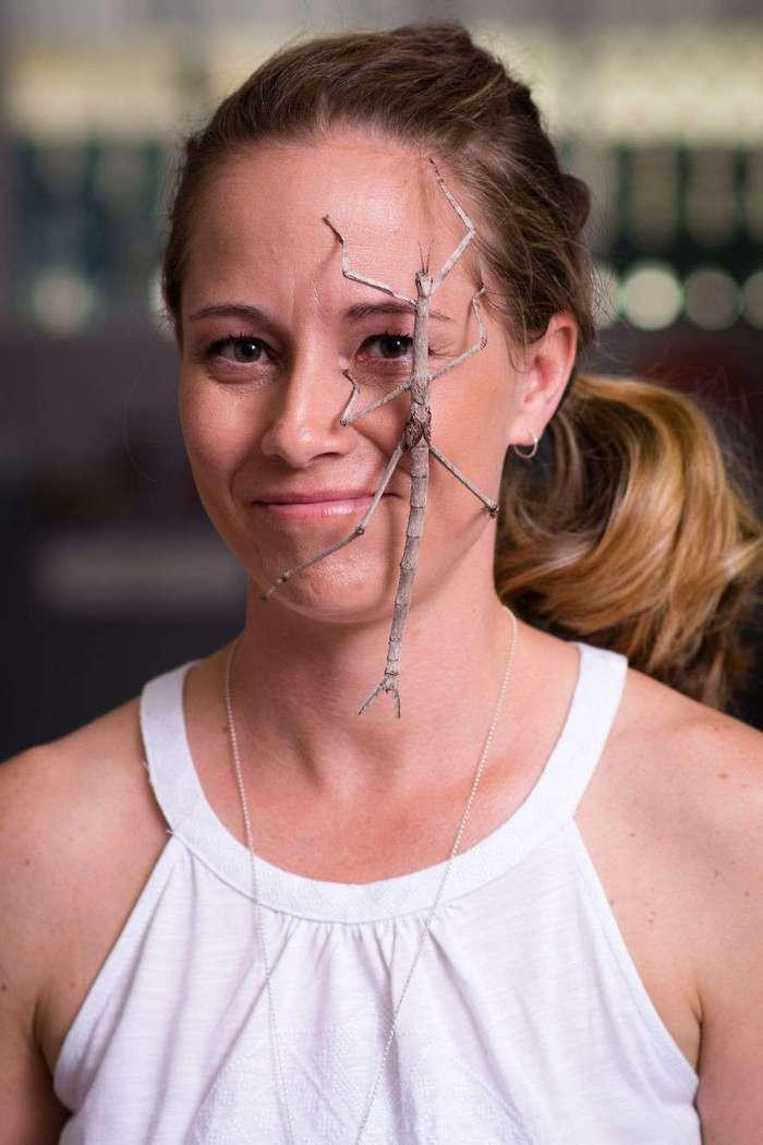 Стив Ирвин мира пауков: эта милая девушка отлично уживается со смертоносными пауками