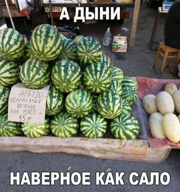 Смешные картинки с забавными надписями
