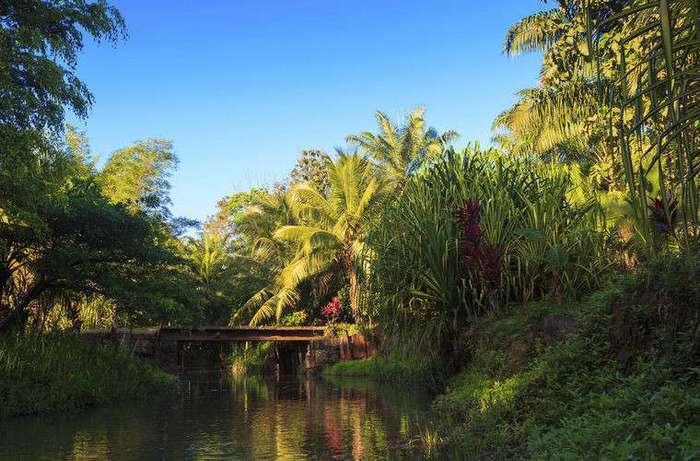 Чего нельзя делать в Коста-Рике