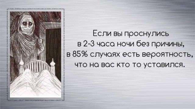 Факты обо всем