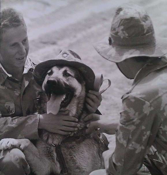 Опыт, оплаченный кровью: псы кандагарского спецназа
