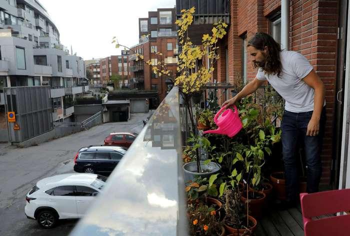 Огород в город