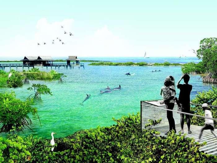 В США откроют дом престарелых для дельфинов