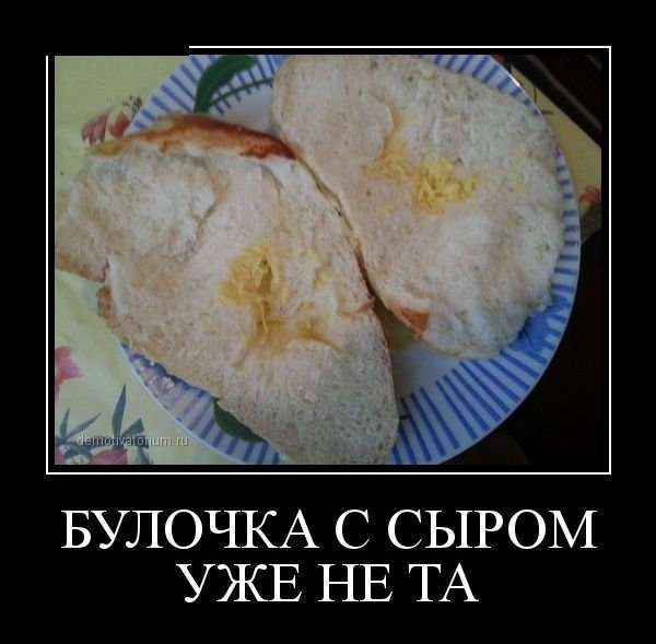 Хлебом не корми - дай только коммент вставить