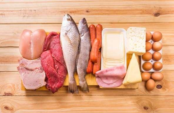 10 лучших источников протеина