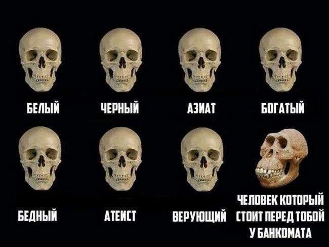 КАЙФОВЫЕ ХОХОТУШКИ