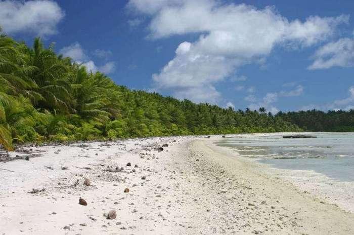 Остров, убивающий всех, кто его посещает. ЗАГАДКИ ПАЛЬМИРСКОГО АТОЛЛА