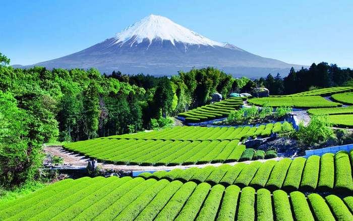 15 причин отправиться путешествовать по Японии