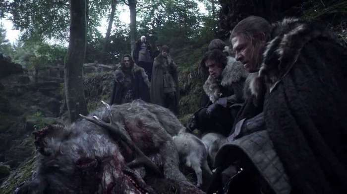 Direwolf Attacks in A Game of Thrones Quiz  By metashades