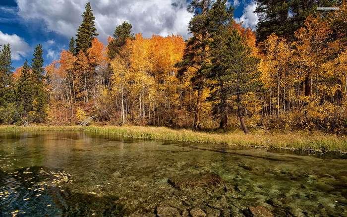 Яркие краски осени. Красивые осенние картинки